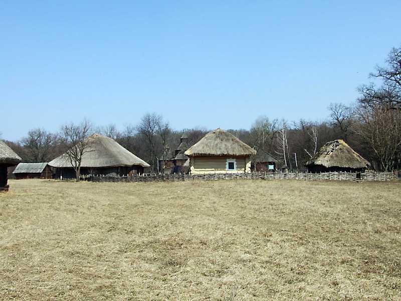 2011 р. Загальний вигляд з боку поля (клуня, хата, хлів)
