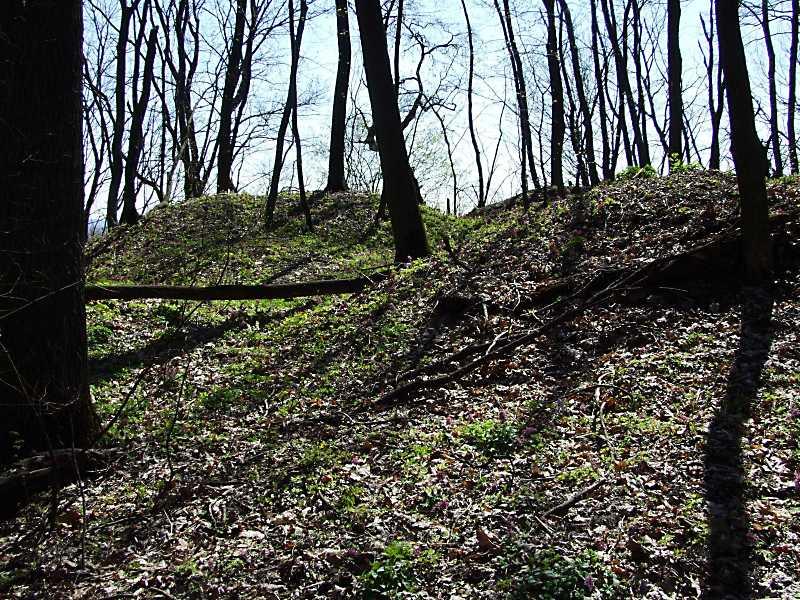 2011 р. Фрагмент курганного могильника